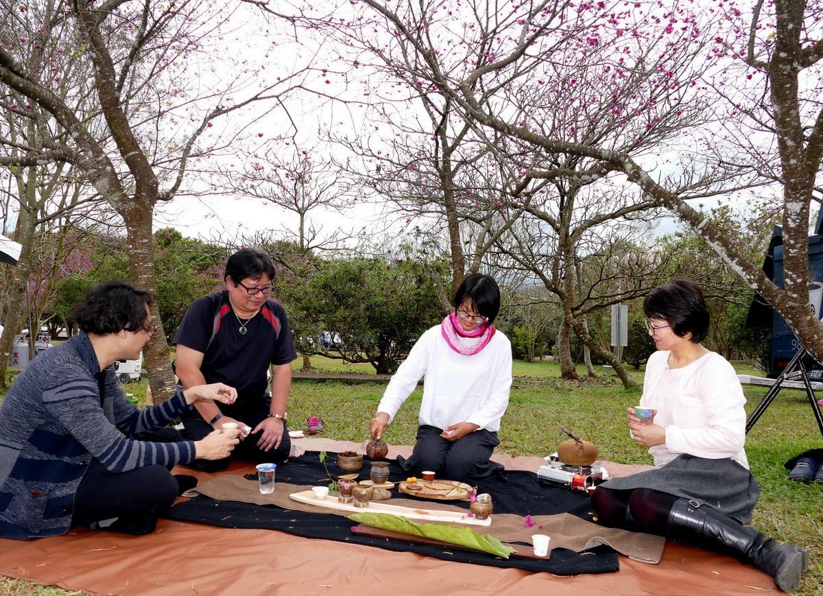 日月潭暨大櫻花季 樹下野餐品茗、聆樂浪漫體驗
