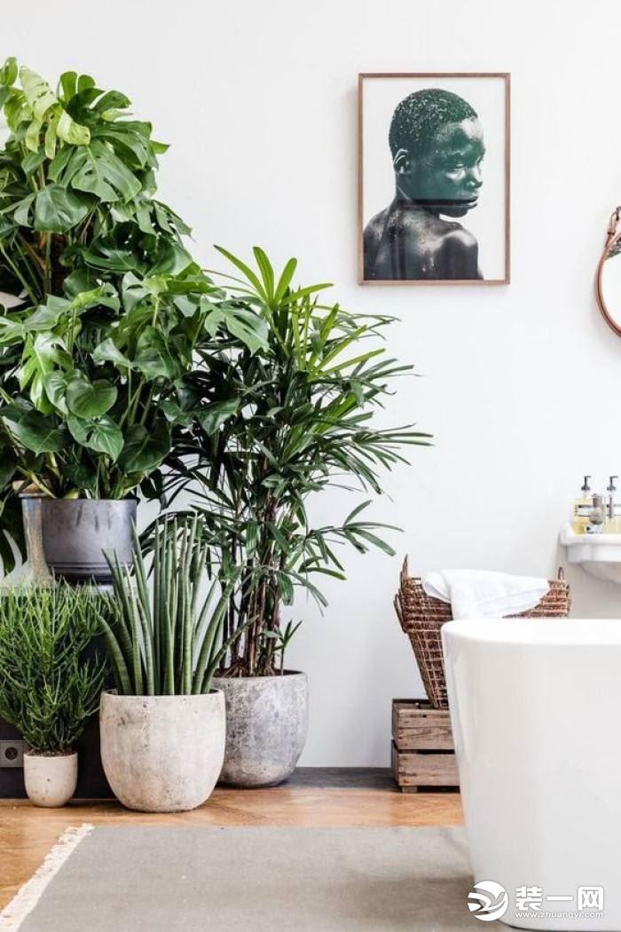 夏季家居用品和裝修清涼小技巧,讓你的家清爽一夏